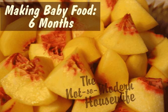Making My Own Baby Food: 6 Months