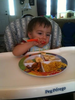 Review: Fresh Baby Portion Plate and So Easy Toddler Food Cookbook