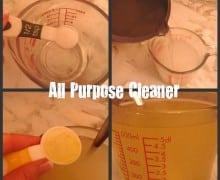 Guest Post: Top 3 Homemade Cleaners