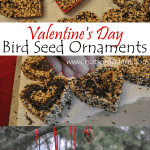 Valentine's Day Birdseed Ornaments