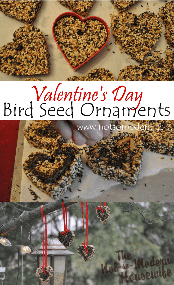 Hanging Valentine's Day Bird Seed Ornaments - The Not So Modern Housewife