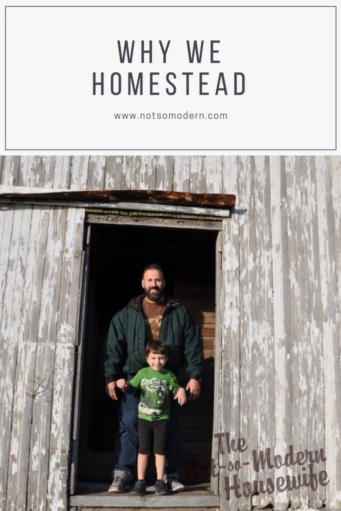 Everyone has different reasons for homesteading, whether to save money, control your food supply, being prepared for emergencies, or helping the environment. Take a look at why we have decided to homestead.