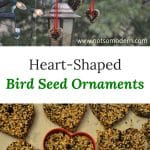 Make a treat for your song bird friends and dress up your bird feeding station with these heart shaped bird seed ornaments.