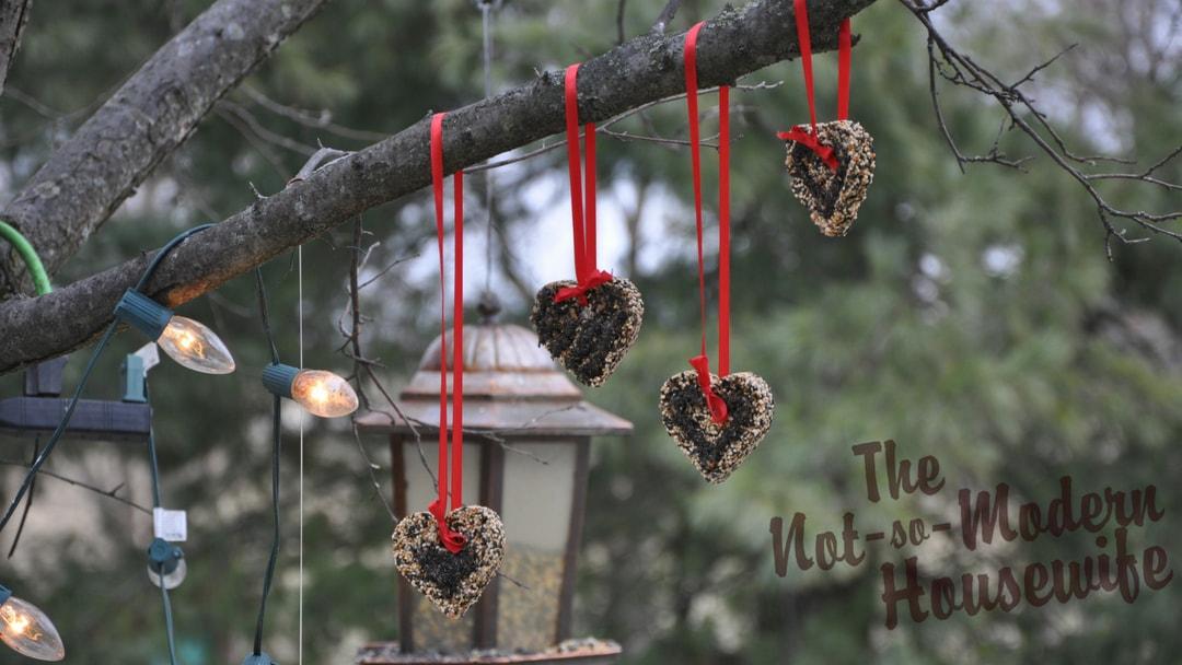 Heart-Shaped Bird Seed Ornaments