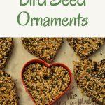 heart shaped bird seed ornaments
