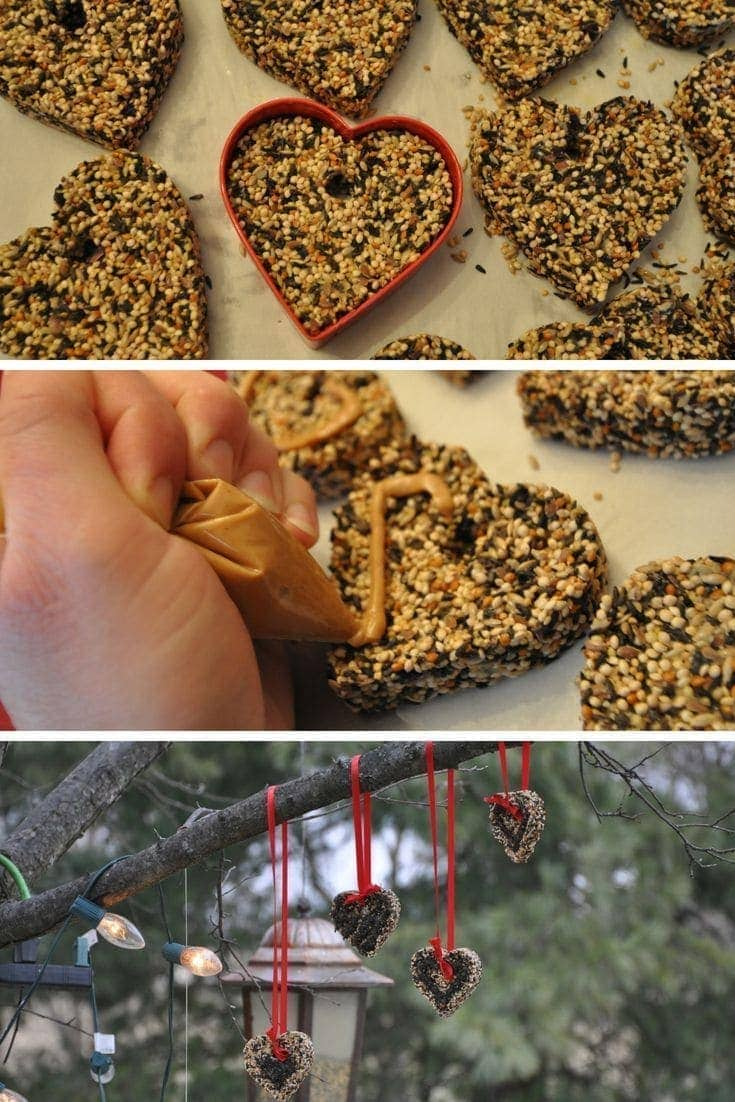 Create beautiful bird seed ornaments to hang outside