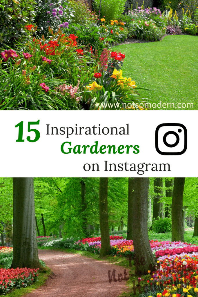15 of the best Instagram accounts to follow for gardening inspiration.