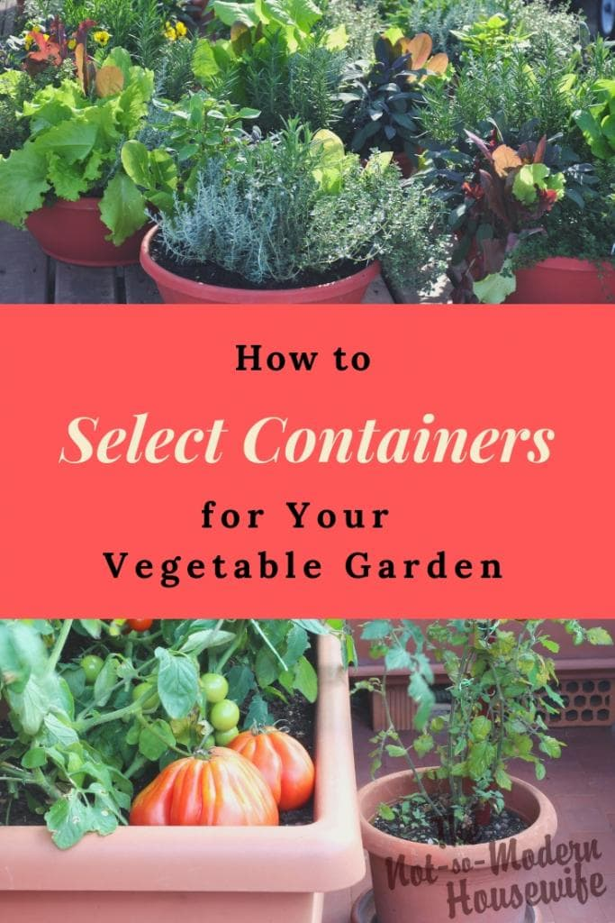 How to Select the Best Containers for Your Vegetable Garden