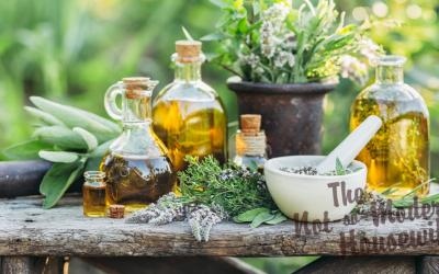 Early Registration Open for The Herbal Academy