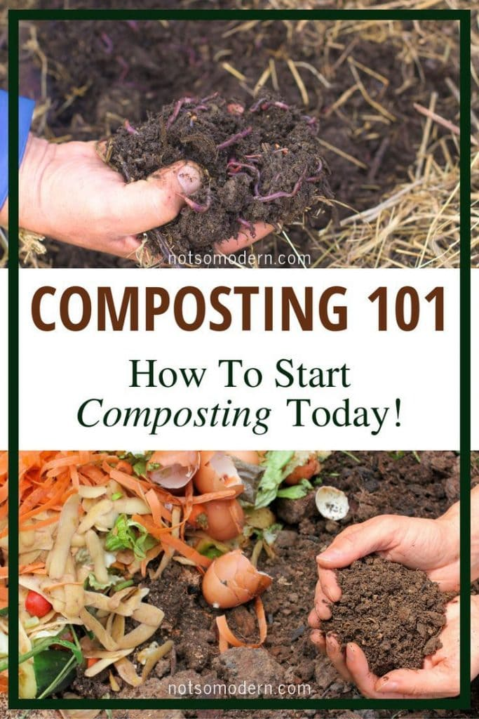 Composting 101 - how to start composting today