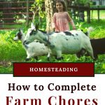 How to Complete Farm Chores with Small Children