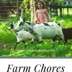 little girl with black and white goats in grass - Farm Chores with Little Kids
