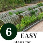 garden with row covers for organic pest control - 6 Easy Steps for Organic Pest Control
