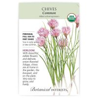 Common Chives - Organic, Heirloom