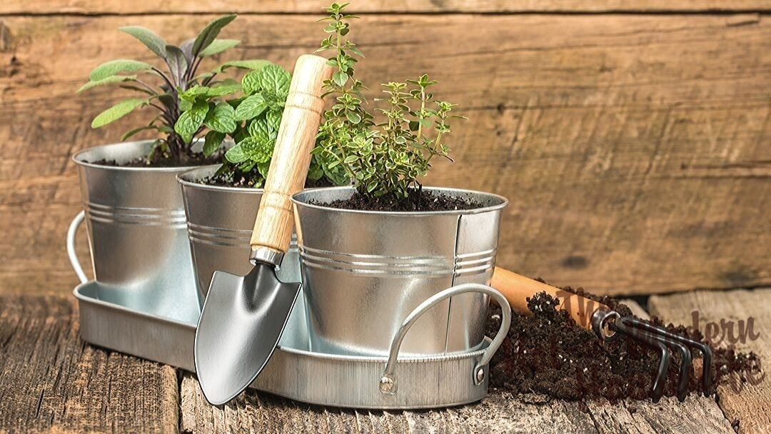 Create a Giftable Indoor Herb Garden Kit