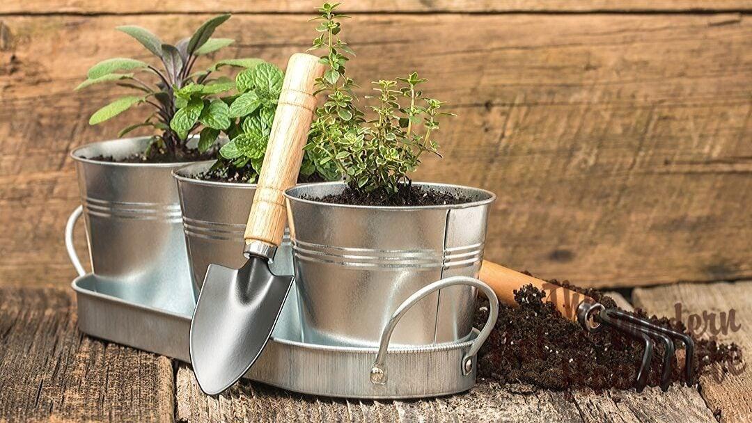 Create a Giftable Indoor Herb Garden Kit