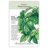 Italian Genovese Basil - Organinc, Heirloom
