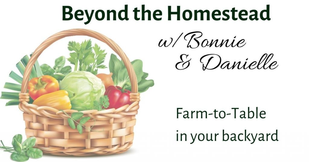 Beyond the Homestead Podcast with Bonnie and Danielle