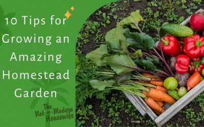 10 Tips for Growing an Amazing Homestead Garden